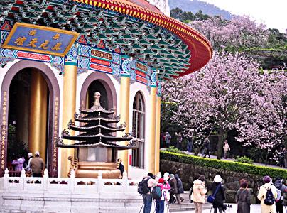 天元宫每天要接待许多赏樱游客